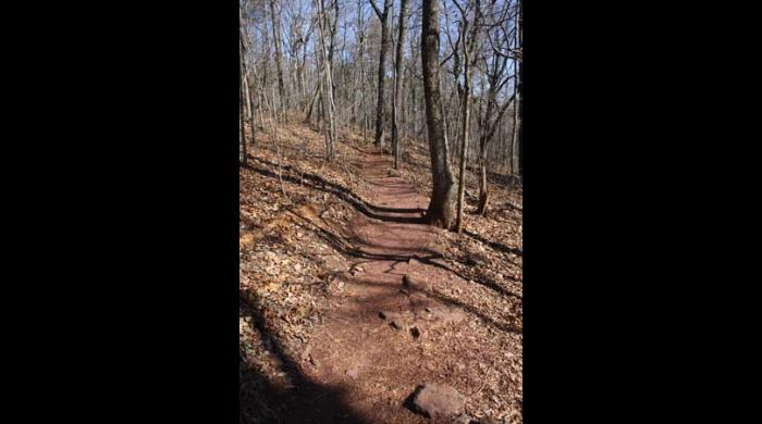 Fourteen miles of trails are found at Ruffner Mountain