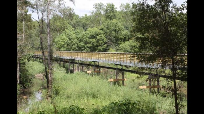 A series of boardwalks and bridges connect the trails.
